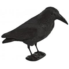 Decoy black crow with flock